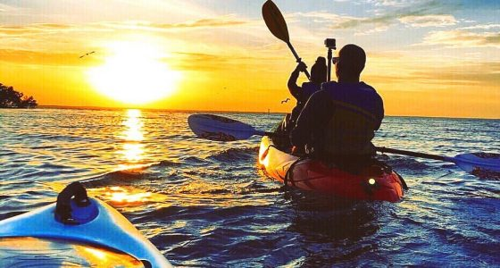 Florida Kayaking Sunset Tour with Bioluminescence