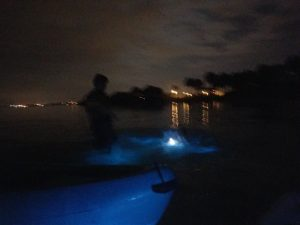 Boy in bioluminous water Florida
