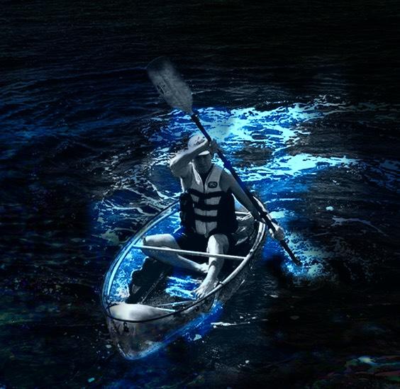 Bioluminescent Kayaking in Clear Kayaks - Orlando, Cocoa