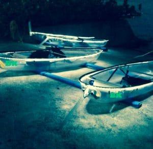 Night Tour Clear Kayaking Florida