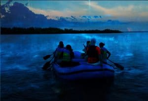 Rafting Bioluminescence tour