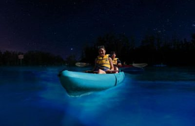 Haulover Canal Bioluminescent Kayaking