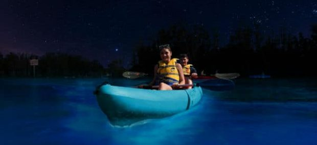 Haulover Canal Bioluminescent Kayaking