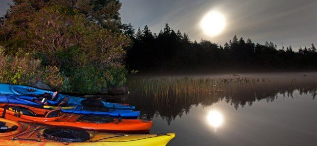 Kayaking at night in Florida