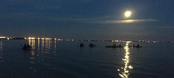 night kayaking tour bk adventure florida