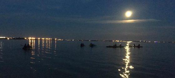 night kayaking tour bk adventure florida