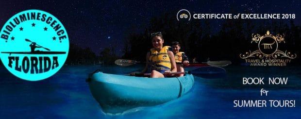Florida Bioluminescence Tours - BK Adventure Kayaking