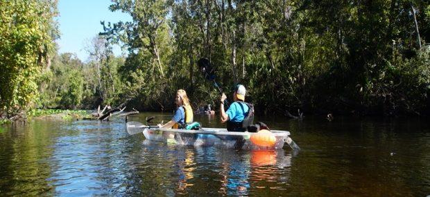 Eco-Friendly Tours In Florida