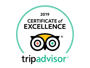 Trip Advisor Excellence BK Adventure Florida Tours
