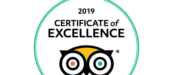 BK Adventure Florida Tours Certificate of Excellence 2019