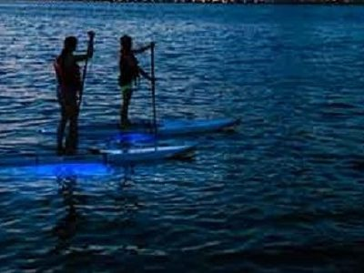 bioluminescence tour SUPs